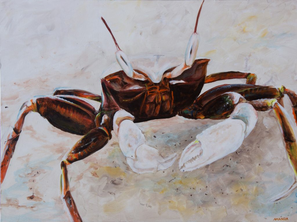 Crab [ Acryl on Canvas ]