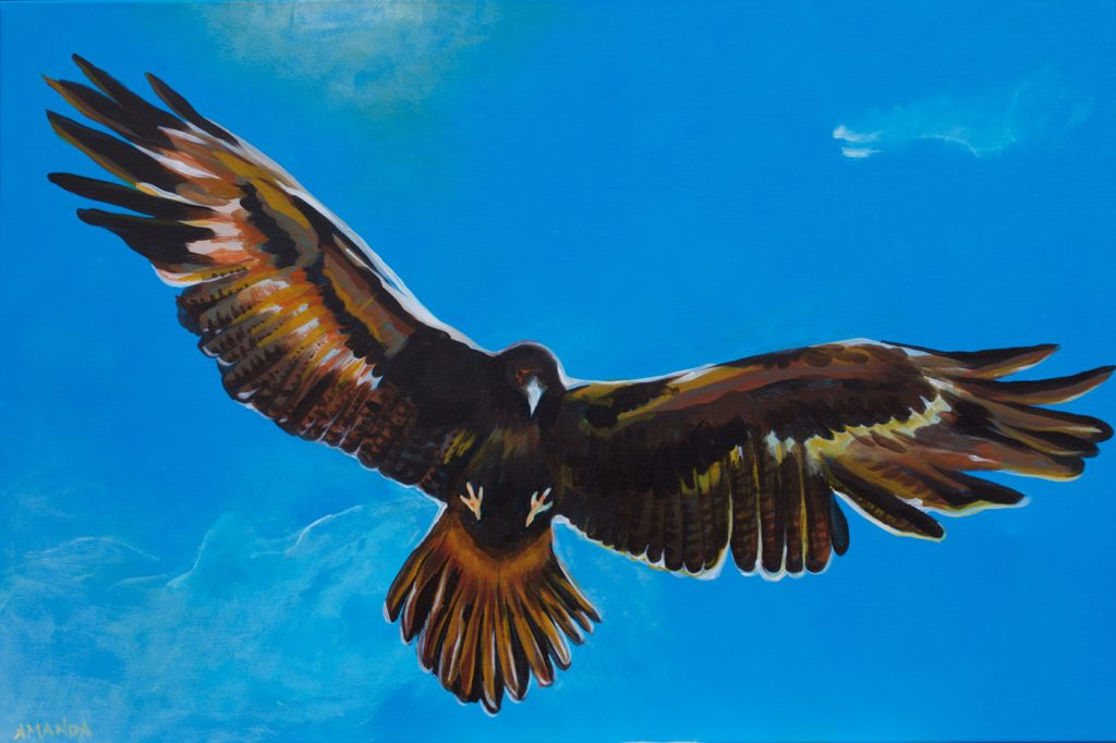 Eagle [ Acryl on Canvas ]