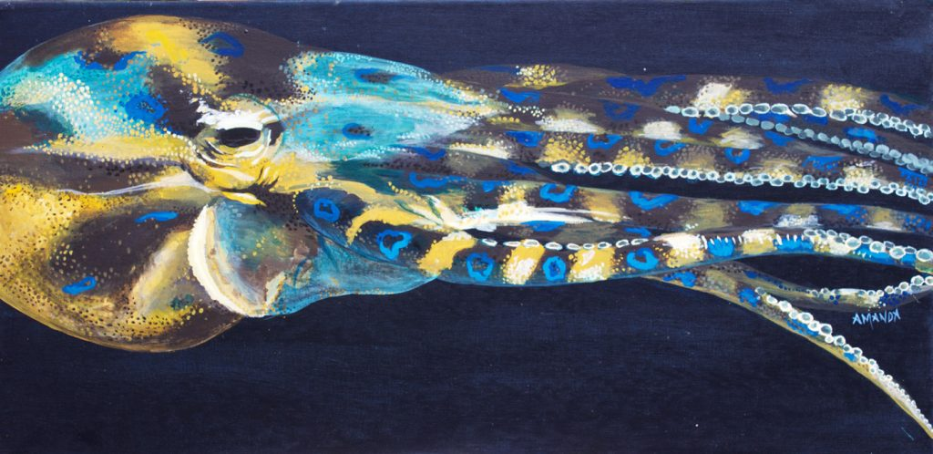(No66) Blue ringed octopus [ Acrylic on Canvas ] 75cm x 37cm